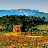Real estate in the Languedoc, now named Occitanie - Immobilier en Occitanie