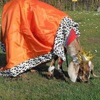 Camping de Kempe