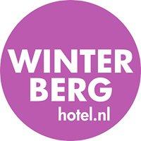 Winterberghotel.nl