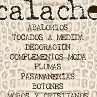 Calache