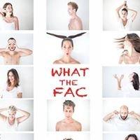 FAC, Fabrique d'Art et de Culture