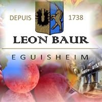 Maison Léon BAUR
