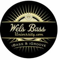 Wels Bass University