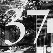 Le 37