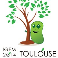 iGEM Toulouse 2014