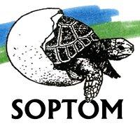 SOPTOM-CRCC
