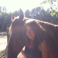 Equipoise Equine and Canine Massage