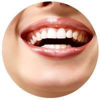 White Orchid Dental