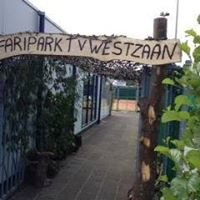 Tennisvereniging Westzaan