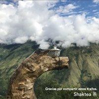 Shaktea