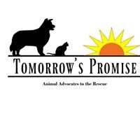 Tomorrow's Promise, Inc.