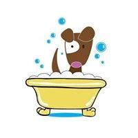 Brown Dog Pet Salon - Somonauk