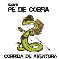 Pé de Cobra