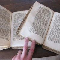 Librairie L'amour qui bouquine