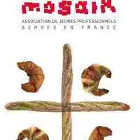Mosaik - Association de jeunes professionnels serbes en France