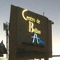 Centro Bellas Artes Guaynabo