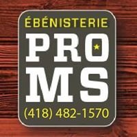 Ébénisterie Pro Ms
