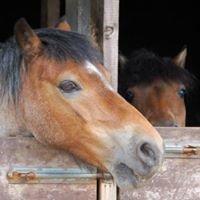 Colgrain Equestrian Centre