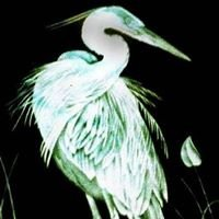 Etched and Carved Art Glass by Angie Godwin Graphic Art