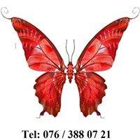 Le Papillon Rouge Sàrl