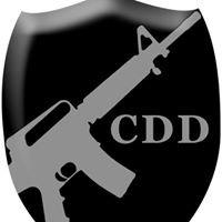 Custom Digital Designs