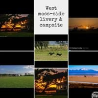 West Moss-side Livery & campsite