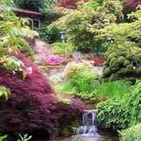 Green Forest Landscape and Design L.L.C
