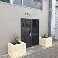Ecologia Environment