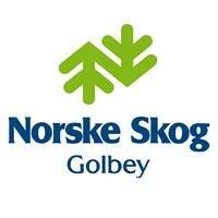 Norske Skog Golbey