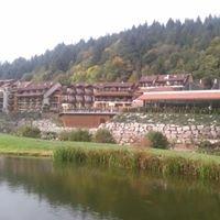 Hotel Restaurant chez Julien - Fouday