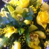Blooming Lovely Florist Haverhill