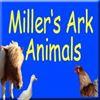 Miller's Ark