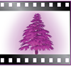 Purple Cedar Animation