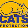 Cats Protection Downpatrick Branch