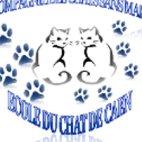 La compagnie des chats sans maître/Ecole du chat de Caen