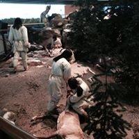 Mashantucket Pequot Tribal Nation Museum