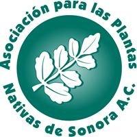 Asociación para las Plantas Nativas de Sonora, A.C.