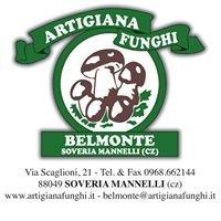 Artigiana Funghi  Belmonte