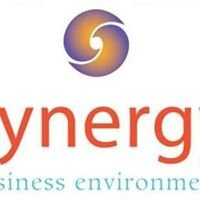 Synergy Business Environments - Knoxville