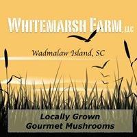 Whitemarsh Farm, LLC