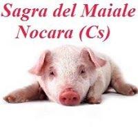 Sagra del Maiale Nocara (CS)