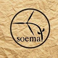 Sociedad de Energía y Medio Ambiente, Facultad de Ingenieria SOEMA
