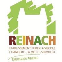 Ferme Reinach