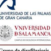 Grupo de dirofilariosis (USAL-ULPGC)