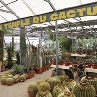 Le Temple du Cactus
