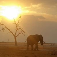 Safricaoverland