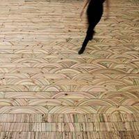 Wickford Floor Sanding