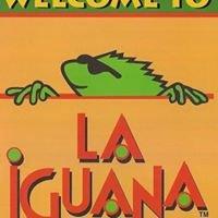 La Iguana Fresh Baja Grill