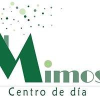 Centro De DIA MIMOS