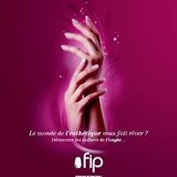 FIP Franchise Internationale et Partenariat